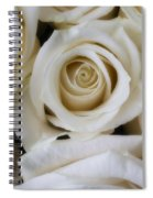 Close Up White Roses Spiral Notebook