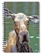 Close Wet Moose Spiral Notebook