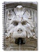 Closeup Of A Public Fountain In Dubrovnik Croatia Spiral Notebook