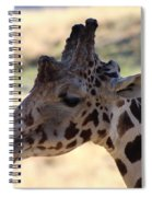 Closeup Of Giraffe Spiral Notebook