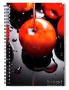 Closeup Of Red Candy Apple On Stick Spiral Notebook