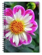 Closeup View Of A Dahlia That Was In The Cesky Krumlov Castle Gardens Spiral Notebook