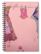 Clothes Line Mural Burlington Vermont Spiral Notebook