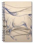 Cloud  Runner Spiral Notebook