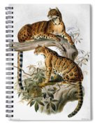 Clouded Leopard, 1883 Spiral Notebook