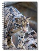 Clouded Leopard Spiral Notebook