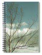 Cloudy Blue Sky Through Tree Top No 1 Spiral Notebook