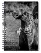 Cloudy Eye Spiral Notebook