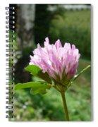 Clover 1 Spiral Notebook