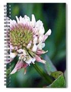 Clover Blossom Spiral Notebook
