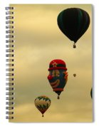 Clown Balloon Spiral Notebook