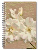 Cluster Of White Roses Posterized Spiral Notebook