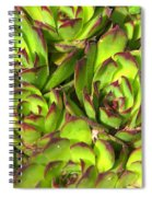 Clustered Succulents Spiral Notebook