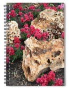 Clusters Spiral Notebook