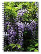 Clusters Of Wisteria Spiral Notebook