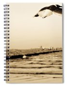 Coastal Bird In Flight Spiral Notebook