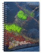 Coastal Floor At Low Tide Spiral Notebook