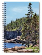Coastline And Otter Cliff 4 Spiral Notebook