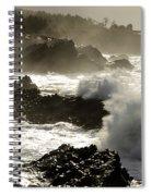 Coastline Oregon Spiral Notebook