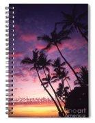 Coastline Palms Spiral Notebook