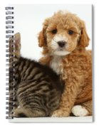 Cockapoo Puppy And Tabby Kitten Spiral Notebook