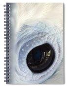 Cockatiel Eye Spiral Notebook