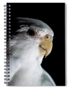Cockatiel Spiral Notebook
