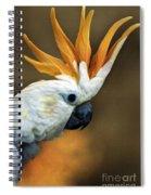 Cockatoo Show Off Spiral Notebook