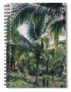 Coconut Farm Spiral Notebook
