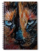 Coconut The Feral Cat Spiral Notebook