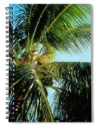 Coconut Tree Spiral Notebook