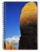 Coercion Spiral Notebook