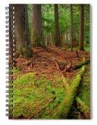 Coeur D'alene Forest Spiral Notebook