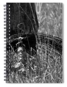 Coiled Devils Rope Spiral Notebook