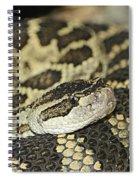 Coiled Rattlesnake Spiral Notebook