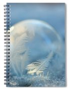 Cold As Ice Spiral Notebook