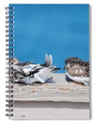 Cold Birds Spiral Notebook