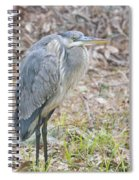 Cold Blue Heron Spiral Notebook