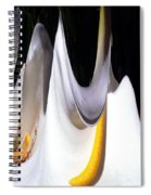 Cold Calla Poles Spiral Notebook