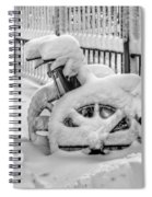 Cold Disposition Spiral Notebook
