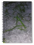 Cold Spiral Notebook