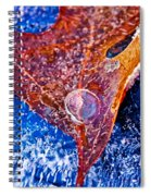 Cold Encasement Spiral Notebook