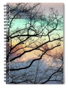 Cold Hearted Bliss Spiral Notebook