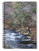 Cold Mountain Stream Spiral Notebook
