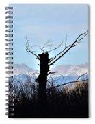 Cold Reach Spiral Notebook