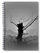 Cold Silence Spiral Notebook