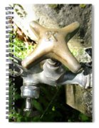 Cold Water In The Green Spiral Notebook