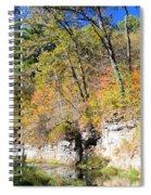 Coldwater Trout Stream Spiral Notebook