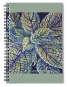 Coleus Leaves Spiral Notebook
