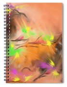 Colibries Spiral Notebook